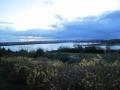Philpot_Rutland_streek_5_Rutlandwater